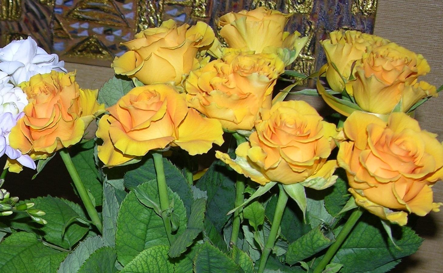 8 września w Dzień Żony składamy żonom najserdeczniejsze życzenia