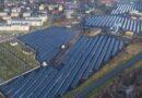 Pro-Sun Sp. z o.o. to Brylant Polskiej Gospodarki, Efektywna Firma, Gepard Biznesu i Mocna Firma Godna Zaufania 2020